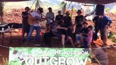 """Neil Young Performing his song """"Monsanto Years""""on Maui at OUTGROW MONSANTO, May, 23,2015 - YouTube"""