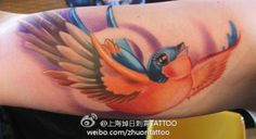 bird tattoo great colour contrast but don't like the artificial/cartoon aspect