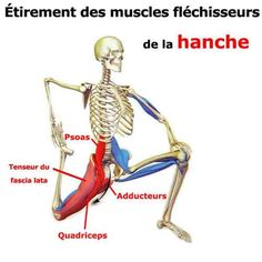 etirement du psoas