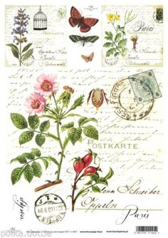 Soft-Decoupage-Paper-Decopatch-Sheet-Vintage-RoseHips-Script-Paris-Postmark
