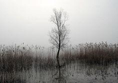 Fotografías de reflejos, ¿por qué nos gustan tanto?