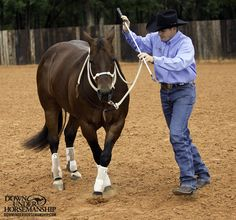 Exercise #6: Yield the Forequarters  Goal: To have the horse pivot on his hindquarters and move his front end away from you 360 degrees with the lightest amount of pressure.  More about the exercise: https://www.downunderhorsemanship.com/Store/Product/MEDIA/D/252/