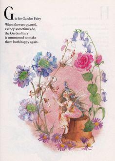 The Fairies' Alphabet Book | Once Upon A Bookshelf