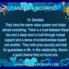 Scorpio Zodiac Facts, Scorpio Love, Scorpio Woman, Zodiac Traits, Zodiac Signs, Scorpio Quotes, Scorpio And Cancer Relationship, Scorpio Relationships, Relationship Quotes