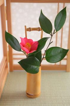 "[Camellia] Camellia is one of the flowers which has been loved by Japanese for long time. Red petals are so beautiful. The floral languages are ""ideal love"",""modesty""."