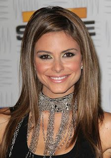 Maria menounos upskirt at vga question not