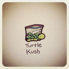 Whatever that means it's still cute Sweet Turtles, Cute Turtles, Baby Turtles, Cute Turtle Drawings, Animal Drawings, Cute Drawings, Cartoon Drawings, Turtle Time, Tiny Turtle
