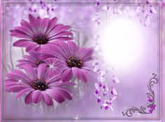 Frame Flower Backgrounds, Borders And Frames, Border Design, Flower Frame, I Wallpaper, Background Images, Photo Editing, Birthday Greetings, Picture Frames