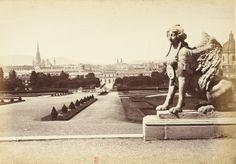 Schonbrunn garden Vienna, Old Photos, Louvre, Garden, Travel, Antique Photos, Voyage, Vintage Photos, Garten