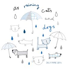 raining cats and dogs by sally payne Cat Drawing, Painting & Drawing, Sketch Note, Animal Doodles, Raining Cats And Dogs, Dog Illustration, Animal Sketches, Kids Prints, Cute Characters