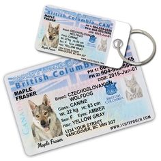 British Columbia Driver License Custom Dog Tags for Pets (2) and Wallet Card - Personalized Pet ID Tags - Dog Tags For Dogs - Dog ID Tag - Personalized Dog ID Tags - Cat ID Tags - Pet ID Tags For Cats >>> You can find more details by visiting the image link. (This is an affiliate link and I receive a commission for the sales)