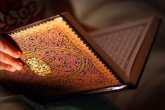 New Muslims, when you have learnt the prayer & basics of Islam so you must focus on the Qur'an & learn it: