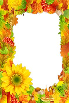 Borders And Frames, Borders For Paper, Family Photo Frames, Autumn Illustration, Sunflower Design, Christmas Frames, Hand Drawn Flowers, Frame Clipart, Png Photo