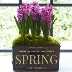 Inspiring Spring Quotes | Southern Living