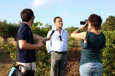 Vito Varvaro live from the vineyards #vendemmiasulmare #settesoli #vendemmia2013 #menfishire #sicily
