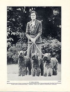 Kerry blue #terrier lady #owner and dogs old #original dog print from 1934, View more on the LINK: http://www.zeppy.io/product/gb/2/301761297443/