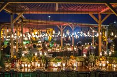 Bulbs lighting production & Wooden canopies - Alma Project production…