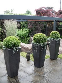 ideas about Contemporary Planters on Pinterest
