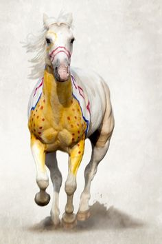 A Song for the Horse Nation Exhibition