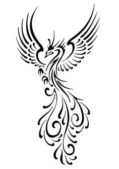 drawing of the phoenix bird | If Looks Could Quill: Flourish Phoenix