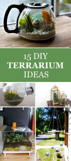 15 DIY Terrarium Ideas to Add Some Green to Your Decor →