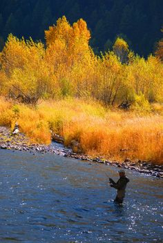 Fall color and a fisherman on Rock Creek in western Montana. Savard Hospitality Consulting http://www.SavardHospitalityConsulting.com 406-825-5300