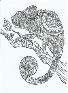 Iguana free printable adult coloring pages