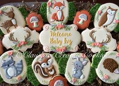 (10) Woodland baby shower cookies. - Claudia's Creative Cookies