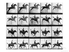 Man and Horse Jumping, from