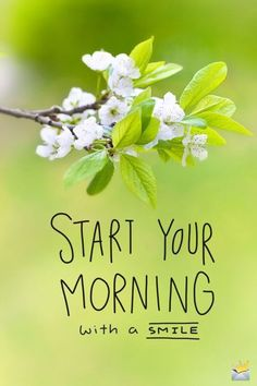 Happy Good Morning Images, Good Morning Images Flowers, Morning Quotes Images, Good Morning Inspirational Quotes, Good Morning Photos, Good Morning Messages, Good Morning Greetings, Good Morning Good Night, Morning Pictures