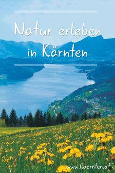 Ein Urlaub in Österreich ist für Naturliebhaber genau das richtige, denn die österreichischen Berge und Seen sind einzigartig. In Kärnten findest du zahlreiche Schutzgebiete, Biosphärenparks, Natur- und Geoparks. Auch als Aktivität mit Kindern ist eine Wanderung in den Kärntner Naturparks gut geeignet. Hier findest du eine Liste mit allen Kärntner Naturparks und die dazugehörigen Infos.  #Aktivurlaub #österreichurlaub #Naturpark #Wandern #Berge #Ausflug #Kärnten #kärntenurlaub Seen, Mountains, Nature, Travel, Unique, Hiking, Viajes, Traveling, Nature Illustration