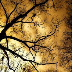 Burning sky by Raceytay Photography