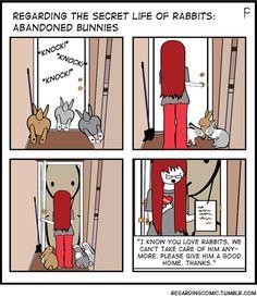Big Bunny, Fluffy Bunny, Bunny Art, Cute Bunny, Bunny Rabbit, Bunny Meme, Funny Bunnies, Baby Bunnies, Cute Funny Animals