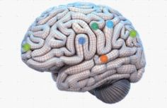 Neuroeducation: Top findings to update education and learning   SharpBrains