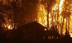US Forest Service stretched to breaking point after record year for wildfires