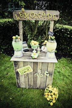 Perfect Lemonade Stand for The Hipster Farm!