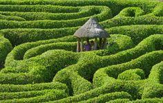 maze at Glendurgan, Cornwall, England    Get Lost (by Tim Green aka atoach)