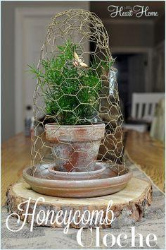 Sweet little Honeycomb cloche..chicken wire cloche