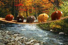 TADAs Revolution — Amigurumi, Art, Stop-motion, Miniatures | Official website of TADAs Revolution