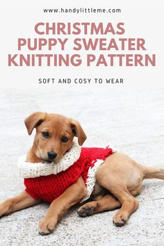 Christmas Puppy Sweater Knitting Pattern Free. Make your puppy a festive holiday sweater with this free knitting pattern. The small dog sweater is knit using super bulky yarn. #puppysweater #dogsweater #knittingpattern #knitting #Christmasknits #holidayknits Dog Sweater Pattern, Sweater Knitting Patterns, Knitting For Kids, Free Knitting, Christmas Puppy, Christmas Crafts, Lion Brand Hometown Usa, Small Dog Sweaters, Dog Jumpers