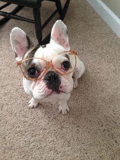 Four-eyed cutie!