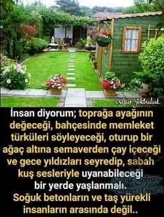 Instagram 9, Moss Garden, Meaningful Quotes, Spiritual Awakening, My Dream Home, Cool Words, Outdoor Gardens, Funny Pictures, Places To Visit