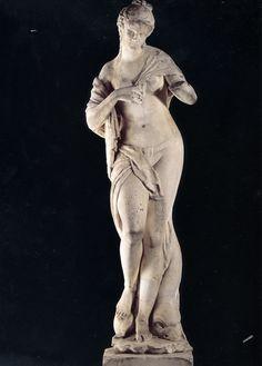 venere.jpg (1652×2304)