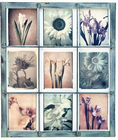 Impossible Cool Film Line《 Emulsion lift 移膜 》 A Level Photography, Experimental Photography, Film Photography, Polaroid, Reflection Art, Film Images, Photo Processing, Photo Manipulation, Gallery Wall