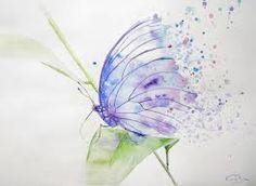 Resultado de imagen para mariposas  reales en acuarelas