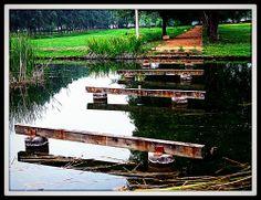 el camí segueix a l'aigua