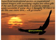 Terry Williams (@terrynwilliams) | Twitter Sunset Images, Working People, Leadership Development, Comedians, Brain, Motivational Quotes, Boss, Author, Thoughts