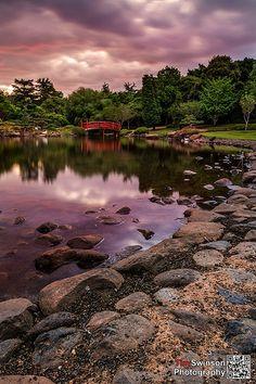 Toowoomba Japanese Gardens Sunset. Beautiful things to see around Toowoomba.  #sunset #japanesegardens #familytime