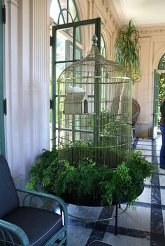 Filoli Gardens, The bird cage is equally a property for the birds and a pretty tool. You can pick whatever you need among the bird cage types and get far more special images. Bird Cage Design, Diy Bird Cage, Antique Bird Cages, Large Bird Cages, Parakeet Cage, Parrot Pet, Bird Aviary, Paludarium, Budgies