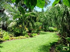 mounts botanical garden s.fl